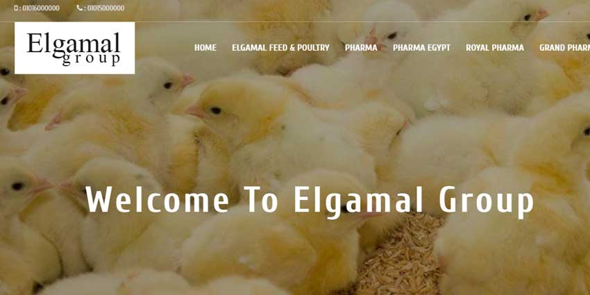 Elgamal Group